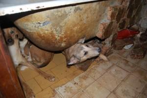 2 в ванной
