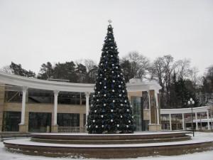 novogodnyaya-elka-fontan